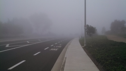 foggy morning in Carlsbad